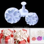 Cetakan Cookies Heart Shape Flower Plunger